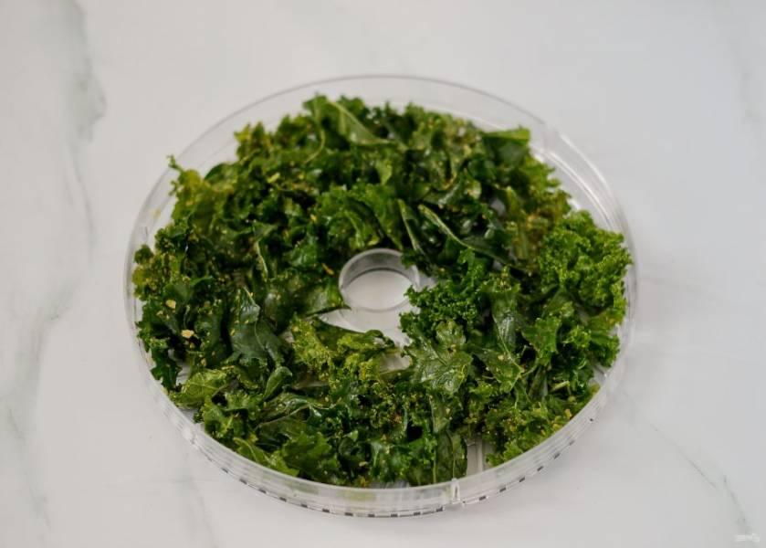 Разложите листья на поддоны для сушки в один слой. Сушите чипсы 6-8 часов при температуре 50 градусов.