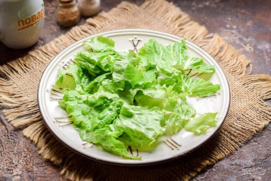 Салатные листья ополосните и просушите. Порвите листья руками и выложите на тарелку.