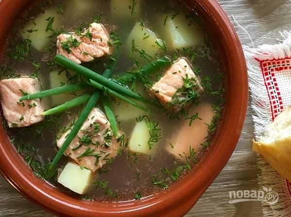 5. Перед подачей добавьте измельченную свежую зелень.  Приятного аппетита!