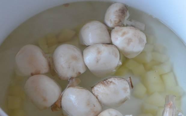 Налейте в кастрюлю 2 литра воды, доведите ее до кипения и добавьте картофель и шампиньоны. Посолив, варите под крышкой 20 минут.