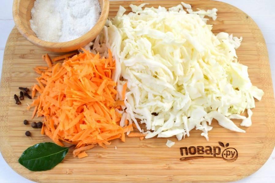В кастрюле налейте кипяченную холодную воду, добавьте соль, сахар, тщательно размешайте. Капусту мелко нашинкуйте, морковь натрите на крупной терке, перемешайте.