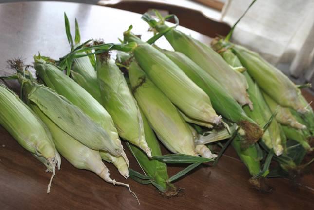 1. Приготовьте бочку или большую емкость, промойте. Почистите кукурузные початки.