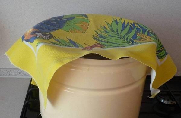 4. Затем накрыть чистым полотенцем и оставить в тепле на 1 час. Затем немного подмять тесто и оставить еще раз подходить.