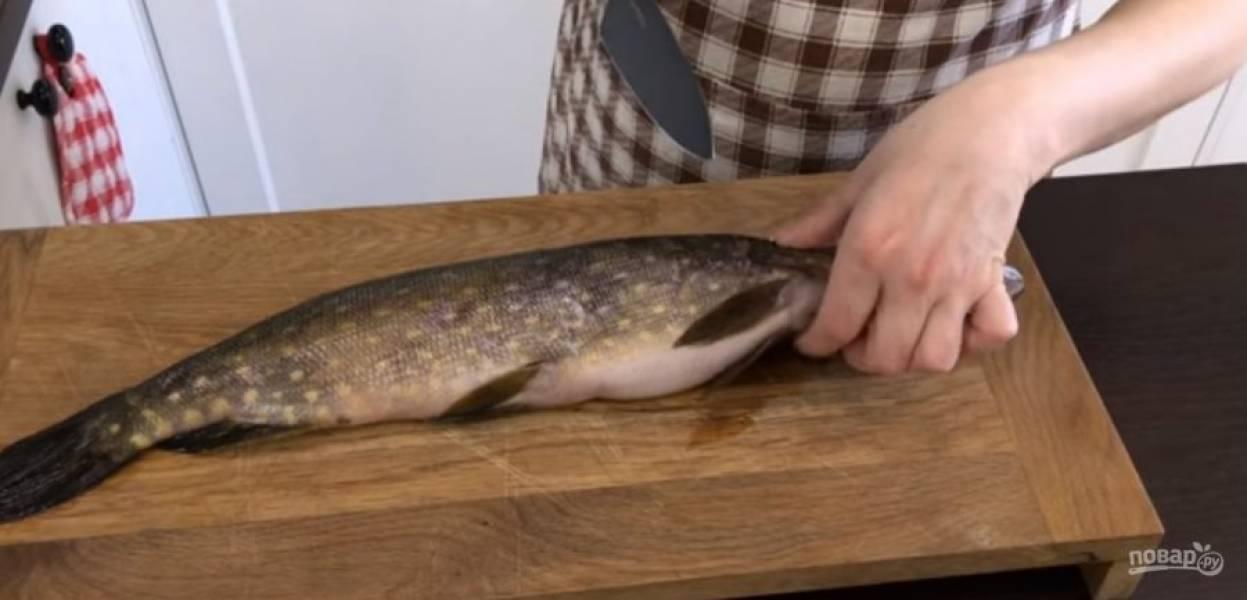 1. Разделайте щуку: под плавниками сделайте надрез, когда нож коснется хребта, поставьте нож под углом и срежьте мясо с самого хребта. Переверните рыбу на другую сторону и проделайте то же самое.