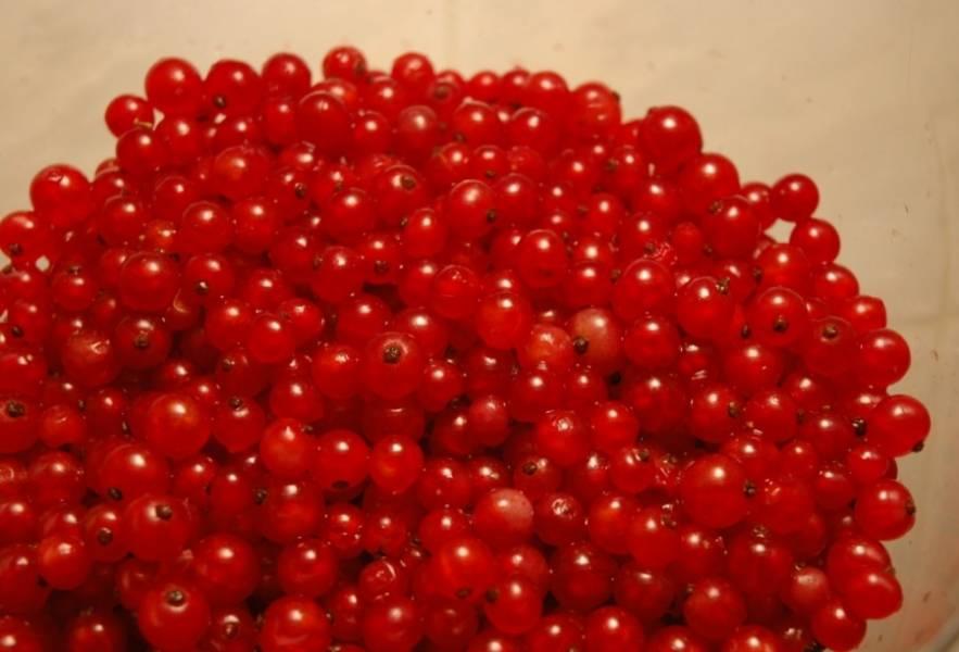 1. Тщательно отбираем смородину, обрываем ягоды с веточек и выкладываем в емкость. Моем и даем воде стечь.