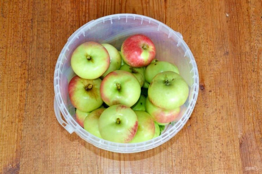 Выложите яблоки.