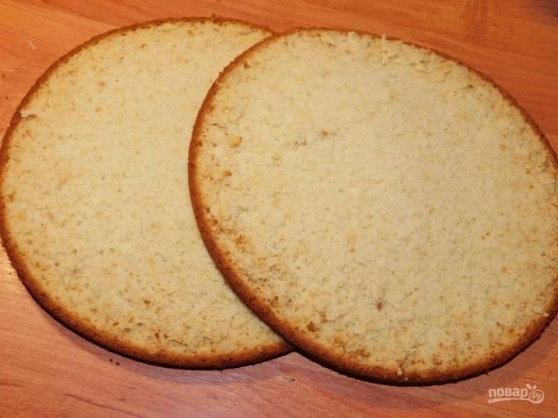 Готовый бисквит остудите и разрежьте на 2-3 коржа.