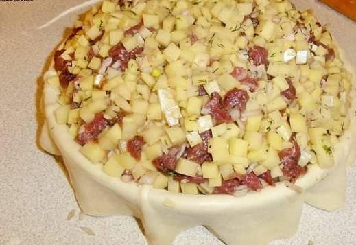 Выложите часть начинки, потом немного косточек  (только не мелких, с крылышек, с ребрышек), и оставшуюся начинку.
