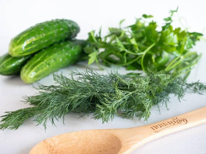 Подготовьте все необходимые ингредиенты. Огурцы и зелень тщательно помойте.