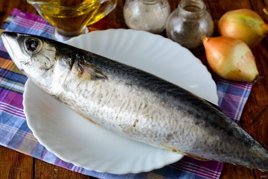 Подготовьте ингредиенты для приготовления скумбрии сухого посола.