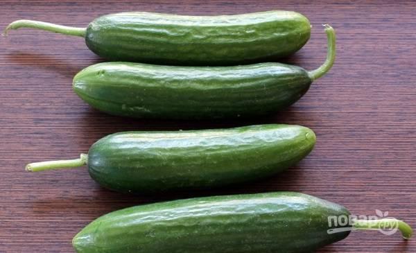 1. Огурчики тщательно вымойте, удалите у них хвостики, сами овощи обсушите.