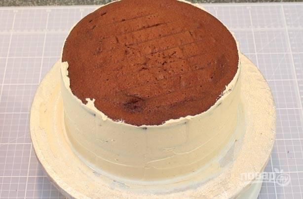 3.Уложите остывший бисквитный корж, смажьте его кремом и на него выложите второй, снова слой крема и третий. Затем равномерно смажьте торт со всех сторон.