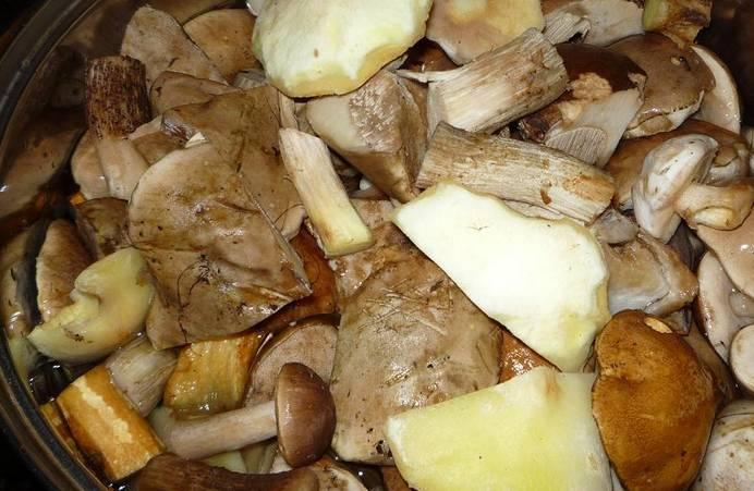 Перекладываем грибы в кастрюлю, заливаем водой и доводим до кипения. Варим 30 минут после закипания, соль по вкусу.
