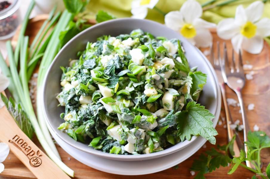 Салат из крапивы
