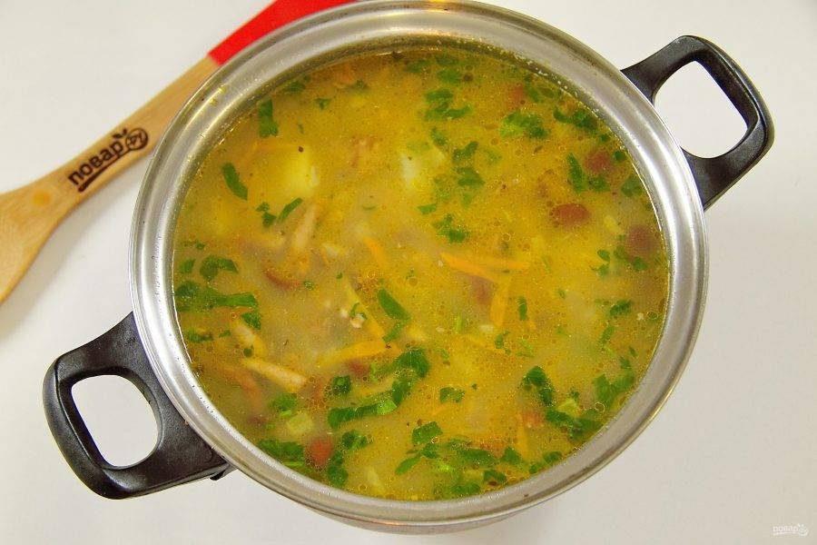 8. Варите все вместе на среднем огне до полной готовности. В конце добавьте свежую зелень и дайте супу немного настояться. Суп с опятами готов.