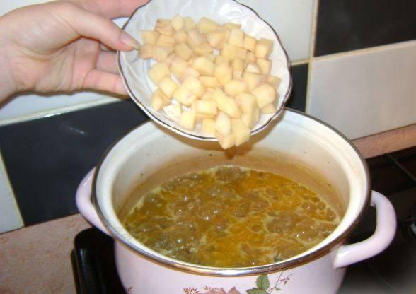 Засыпаем картофель в суп, если нужно доливаем кипятку и варим суп 8-10 минут. Кладем специи и лавровый лист. Томатная паста - по желанию.