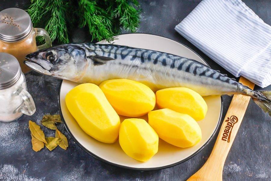 Подготовьте указанные ингредиенты. Скумбрию разморозьте, если приобретали рыбу замороженной. Картофель очистите от кожуры и промойте в воде.