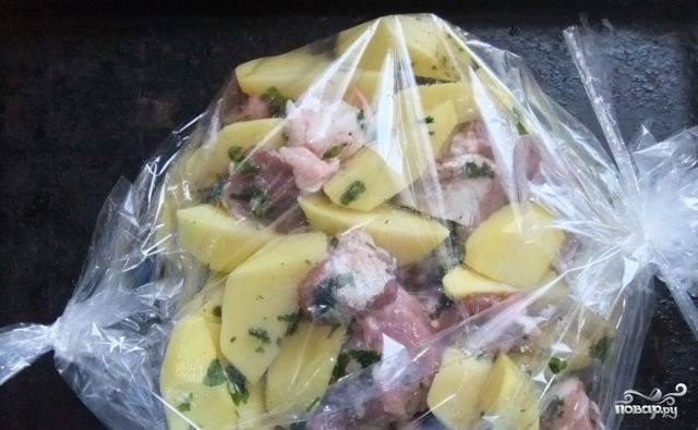 3. В тарелку выложите нарезанное мясо, пересыпьте специями. Сложите все в пакет. Добавьте лук. Посолите и все тщательно перемешайте, встряхнув пакет, завяжите его. Положите пакет в форму для выпечки и запекайте 40 минут при 200 градусах, сделав дырочки в пакете.