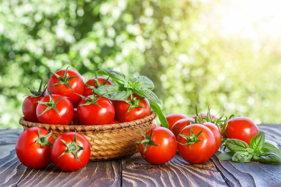 Почему помидоры нельзя хранить в холодильнике