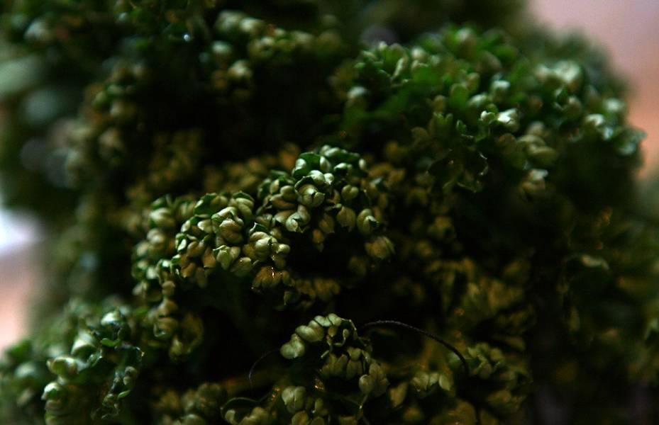 Зелень промойте, ветчину нарежьте тонкими полосками. Уже перед подачей добавляем к фетучини.