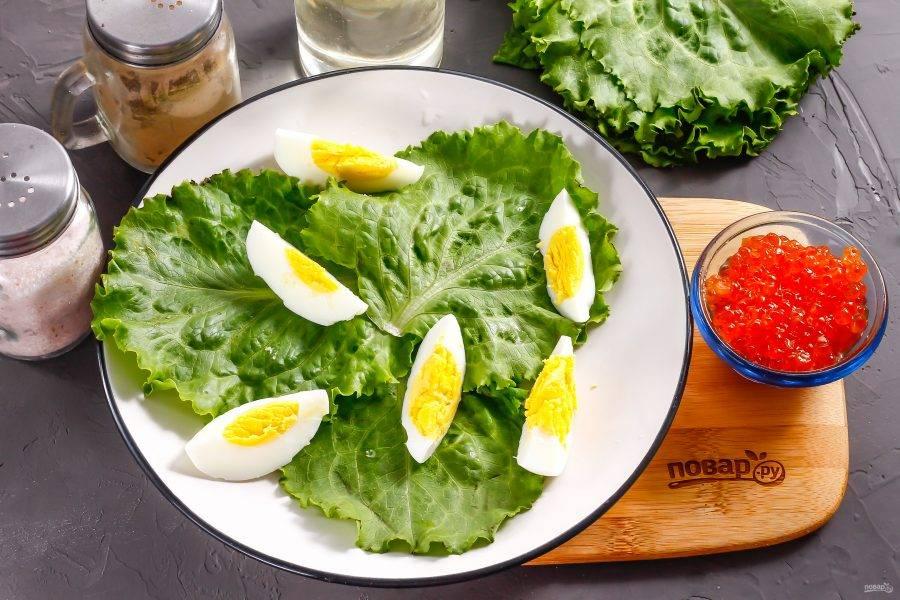 Заранее отварите куриное яйцо в течение 12 минут, а затем остудите в ледяной воде. Счистите скорлупу и промойте. Нарежьте ломтиками. Промойте листья салата, удалите жесткие основания листьев и выложите их на тарелку. На салат поместите яичную нарезку.