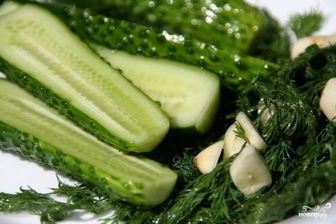 4.Уже спустя 12-14 часов наши огурцы полностью готовы. На следующий день с них можно смело снимать пробу. Подавайте их на блюде со свежей зеленью.