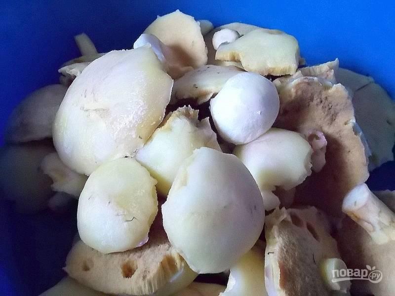 Переберите и очистите грибы от грязи, удалите пленки на шляпках.