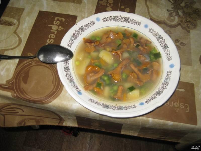 Перед подачей на стол добавим мелко нарезанный укроп или петрушку по вкусу. Суп очень вкусный и со сметаной, и без, тут уж на любителя. Приятного аппетита!