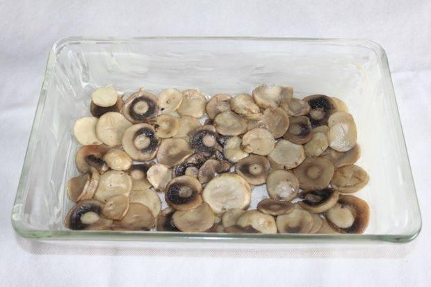 В форму уложите часть грибов.