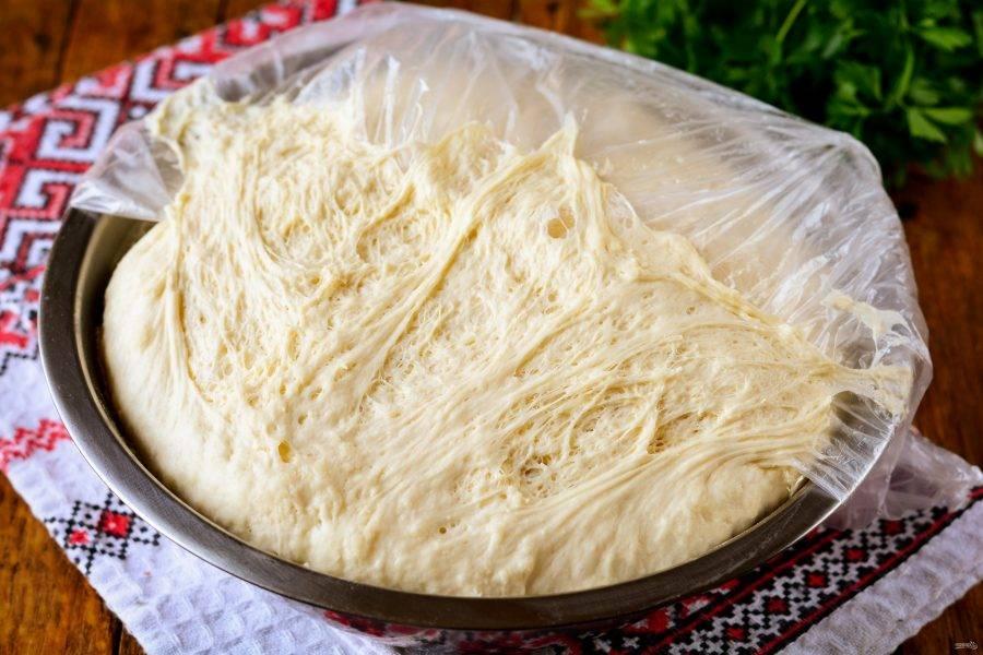 Тесто подошло, увеличилось в 2-3 раза, приступайте к приготовлению мини-пиццы.