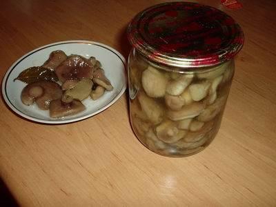Разложите маслята по стерилизованным банкам, сверху залейте рассолом ( на 1 литр - 2 ст.л. уксуса). Закатываем крышками и храним в прохладном месте. Приятного аппетита!