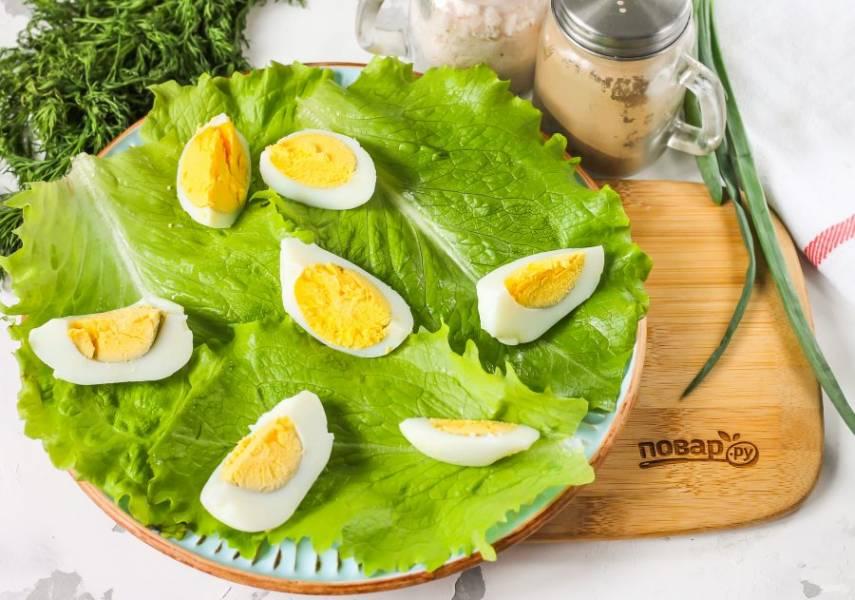 Очистите отварное яйцо от скорлупы, промойте его в воде вместе с салатными листьями. Стряхните лишнюю жидкость с зелени, выложите ее на тарелку. Яйцо разрежьте на 4-6 частей и выложите на тарелку.