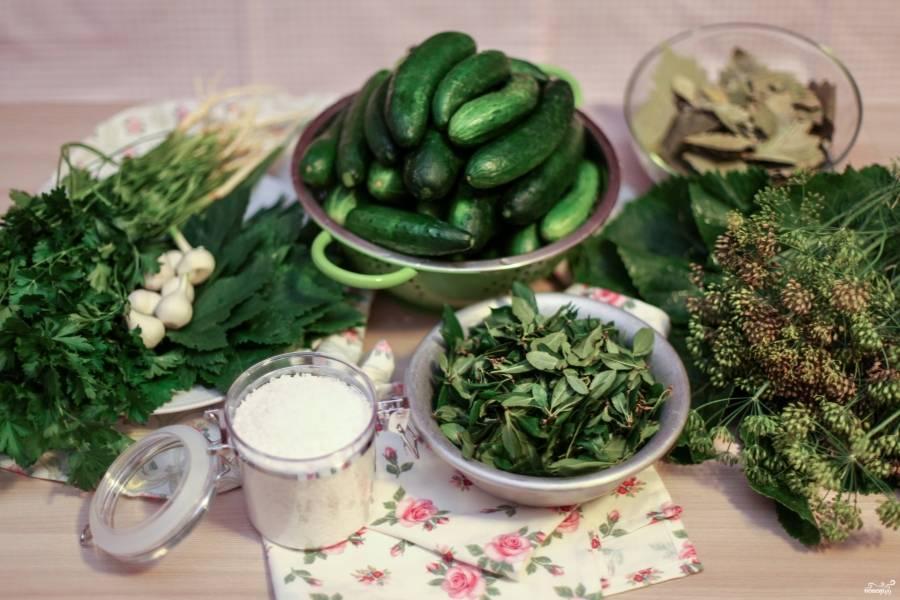 Итак, подготовили все ингредиенты (огурцы в воде настоялись, ее можно слить), зелень, специи. Можно приступать!