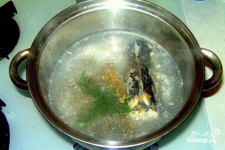 Укладываем в кастрюлю разделанную рыбу( не забудьте удалить жабры у щуки!!!). Заливаем таким количеством воды, чтобы она покрыла рыбу. Добавляем соль, перец и лавровый лист. Можно бросить пару веточек укропа. Варим на маленьком огне минут 20.