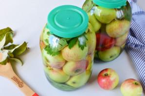 Яблоки, моченые на зиму - фото шаг 8