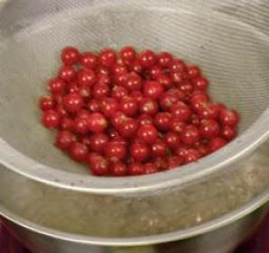 Морс из красной смородины - фото шаг 1