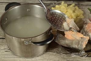 Суп из головы горбуши - фото шаг 5