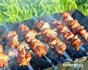 Шашлык из свинины, маринованый в помидорах - фото шаг 6