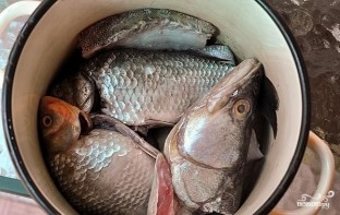Уха рыбацкая - фото шаг 2