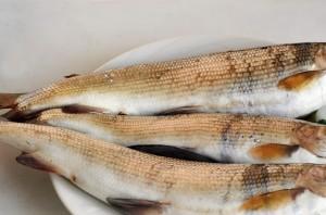 Рыба жареная с луком - фото шаг 1