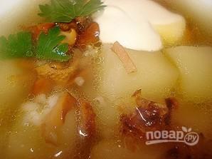 Суп из лисичек - фото шаг 6