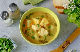 Суп с творожными клецками - фото шаг 10