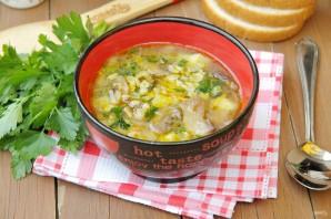 Овсяный суп с грибами - фото шаг 9