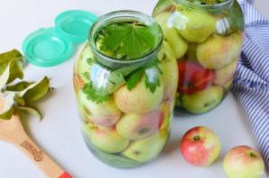 Яблоки, моченые на зиму - фото шаг 7