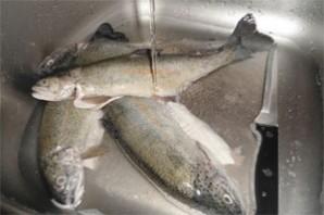 Рыба, запеченная с овощами - фото шаг 1