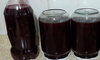 Домашнее вино из сливы - фото шаг 3