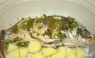 Рыба в пароварке - фото шаг 3