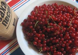 Желе из сока красной смородины - фото шаг 1