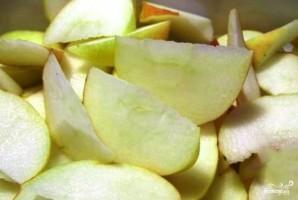 Яблочная водка - фото шаг 1