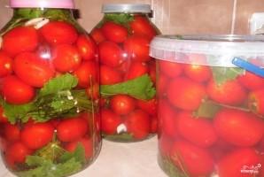 Соленые помидоры без закатки - фото шаг 4